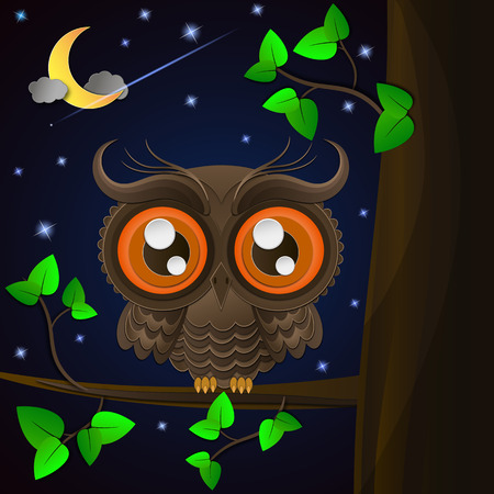 night sky: Owl and moon, nocturnal sky. illustration
