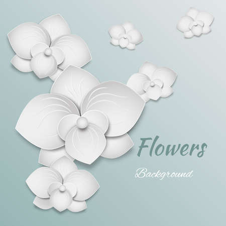 white orchids: paper flowers background - white orchids vector illustration