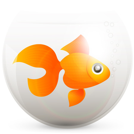 lonely goldfish in a fishbowl