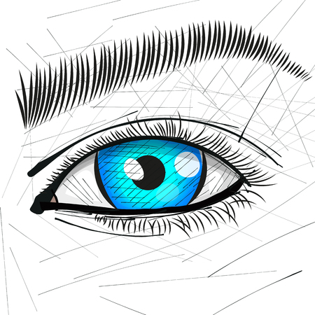 Beautiful Woman Eye And Brow vector illustration.