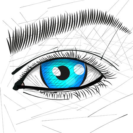Beautiful Woman Eye And Brow vector illustration.
