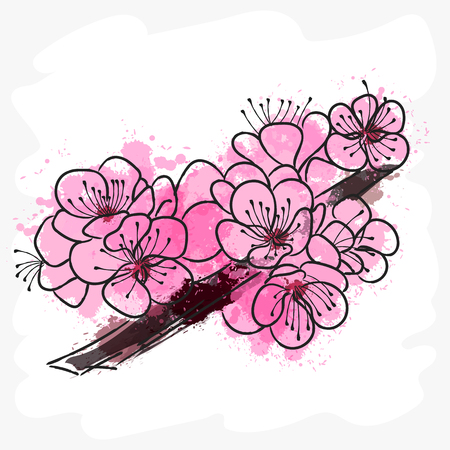 Watercolor painting of branch of cherry blossoms-vector illustration. Japan.