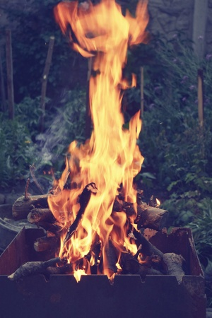 firewood hot fire boards nature wild forest