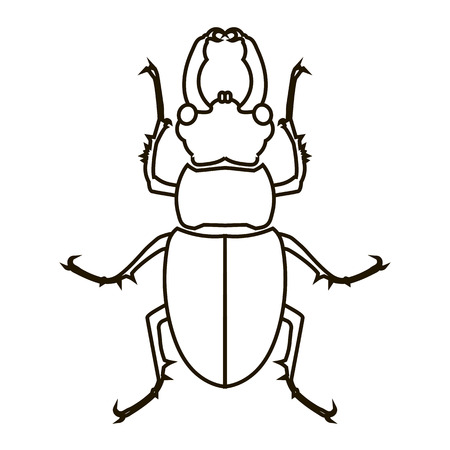 Vector silhouette beetle isolated on a white background. 向量圖像