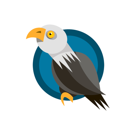 Range of icon design with the American eagle, rendered in flat design style Illustration
