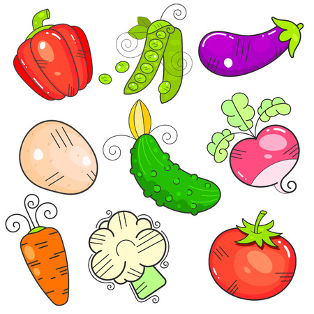 Art vegetables. the FlatStyle property. The power is isolated. Illustration