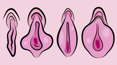 Human Vagina, Vaginal Opening Or Female Reproductive Sex Organ Line Art Elements Of Body Parts Set. Simple Icon For Websites, Web Design, Mobile App Ilustracja