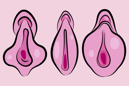Human Vagina, Vaginal Opening Or Female Reproductive Sex Organ Line Art Elements Of Body Parts Set. Simple Icon For Websites, Web Design, Mobile App Illustration