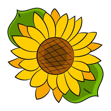 Sunflower Flower Isolated, Vector Illustration.nature Background For Your Needs Illustration