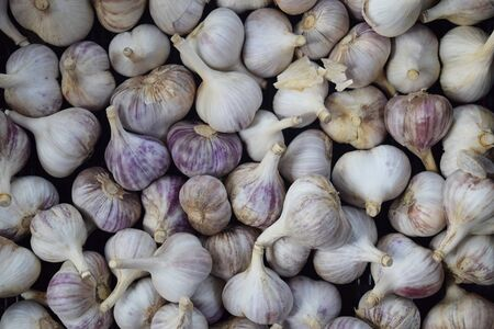 Organic Garlic In The Background Drawer For Your Needs