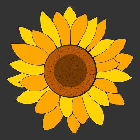Sunflower Flower Isolated, Vector Illustration. Nature Background Illustration