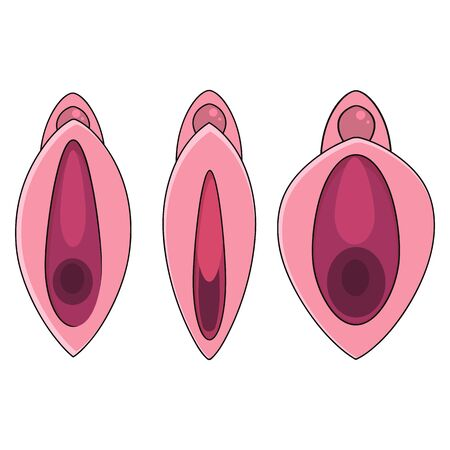 Set Human Vagina, Vaginal Opening Or Female Reproductive Sex Organ Line Art Vector Icon For Apps And Websites