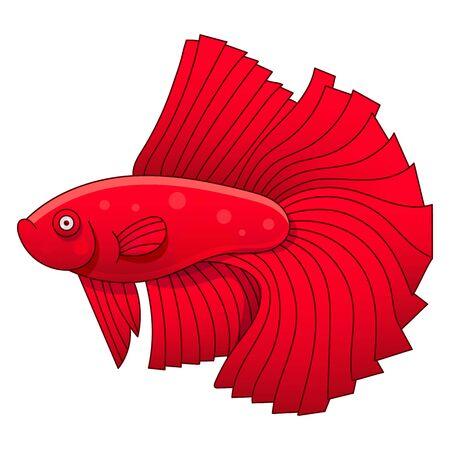 Aquarium Fish Cockerel Vector Illustration For Kids And Adults Иллюстрация