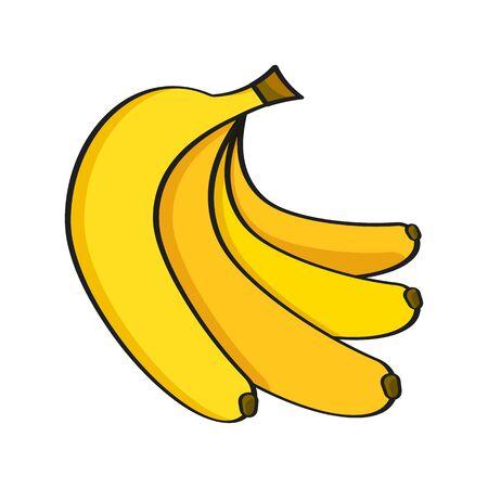 Fruta de plátano de cerca. Racimo de plátanos . Ilustración vectorial cualitativa sobre plátano, agricultura, frutas, cocina, gastronomía, etc. Ilustración de vector