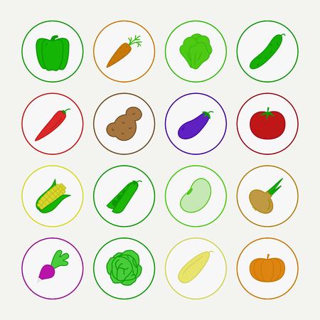 vector vegetable icon set with corn, pepper, pea, bean, radish, pumpkin, tomato, chilli, cucumber, cabbage, potato, carrot, onion for banner sale, pattern, logo, decoration. color flat style 10 eps Ilustração