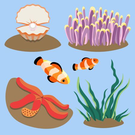 set of illustrations with sea corals starfish, clown fish, oyster with a pearl and alga. colorful underwater plants and animals. marine life
