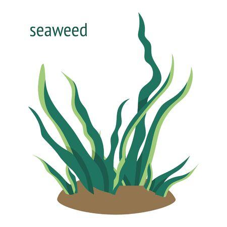 illustration with green seaweed. underwater plants cartoon icon Ilustración de vector
