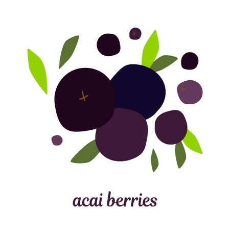 illustration with acai berries and leaves. modern abstract design for packaging, print for clothes, fabric
