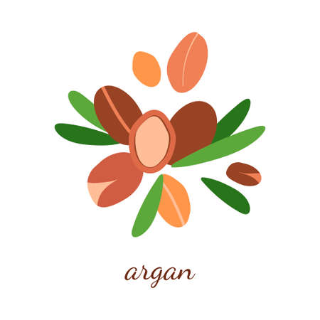 illustration with argan oil. argan berries with leaves. modern abstract design for background, packaging paper, cover, fabric, card, cosmetics and oil Vettoriali