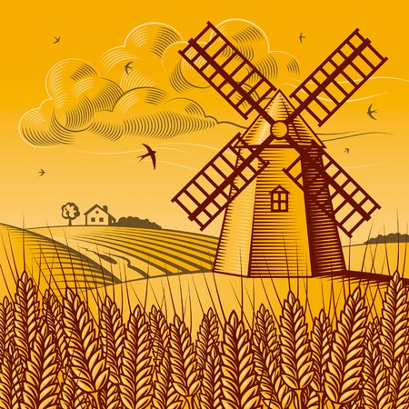 windmills: Landscape with windmill Illustration