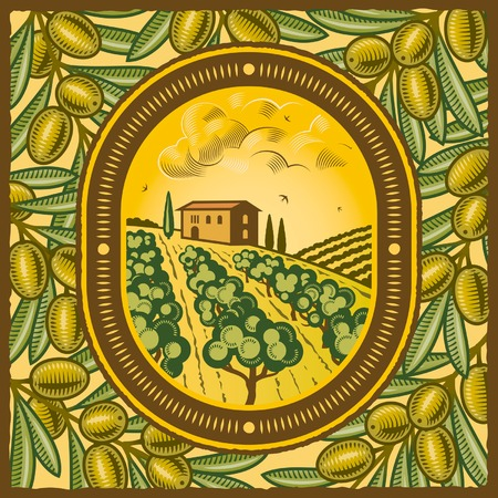 olive farm: Olive grove Illustration