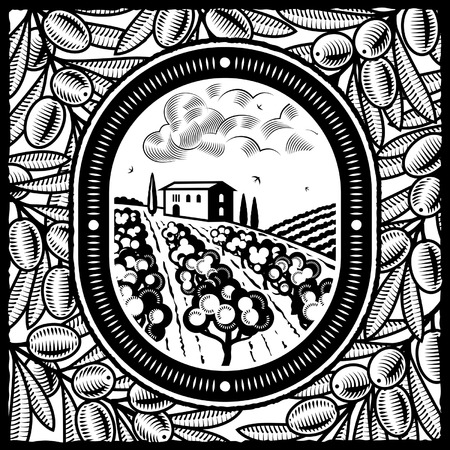 Olive grove black and white Vector