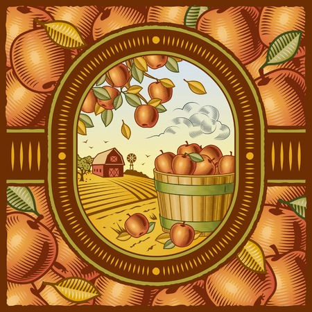 Apple harvest Stock Vector - 7916612
