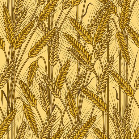 xilografia: Fondo de orejas de cereales transparente