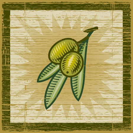 Retro olive branch