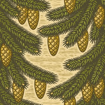 spruce: Fondo de Picea transparente