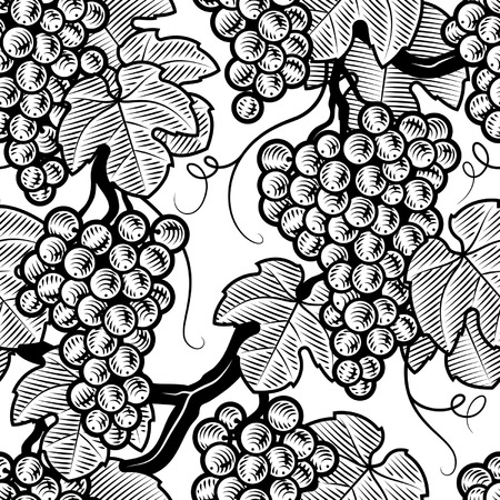 woodcut: Seamless grape background black and white Illustration