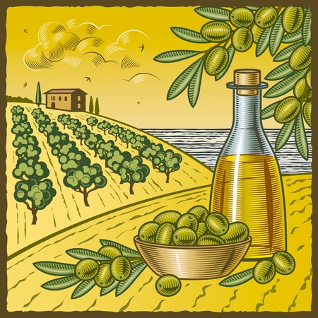 Cosecha de la oliva Ilustración de vector