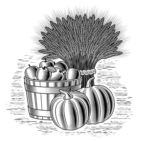 black and white line drawing: Retro harvest still life black and white Illustration