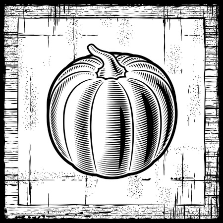 Retro pumpkin black and white Vector