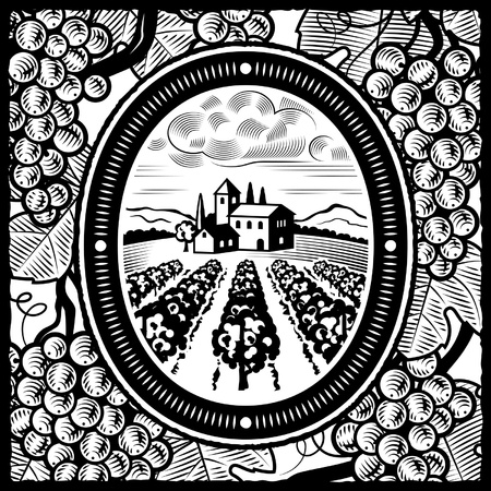 black and white line drawing: Vineyard black and white Illustration