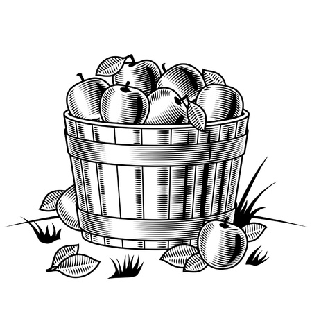 Retro bushel of apples black and white