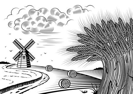 Wheat fields landscape black and white Illustration