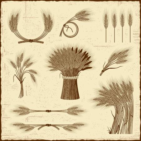 Retro Getreide Sammlung Vektorgrafik