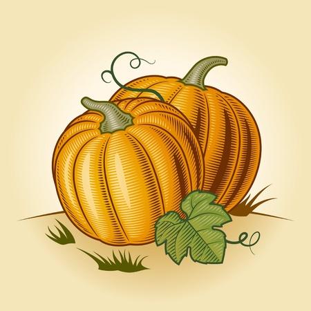 Retro pumpkins Stock Vector - 13234669
