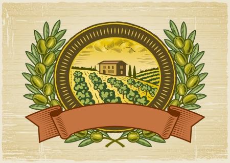 Etiqueta de la cosecha de oliva