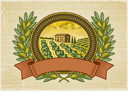paisaje mediterraneo: Etiqueta de la cosecha de oliva