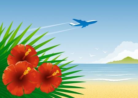 hawaii flower: Tropical beach Illustration
