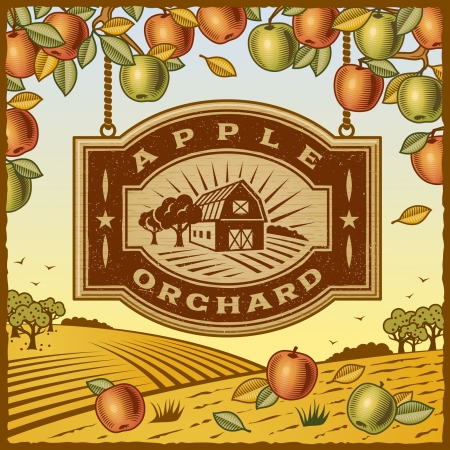 Apple Orchard Stock Vector - 15379677