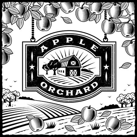 Apple tree: Apple Orchard in bianco e nero