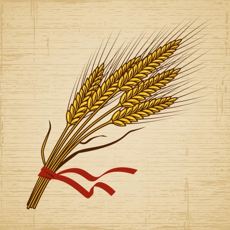 Retro Wheat Vector