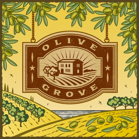 the grove: Retro Olive Grove Vectores