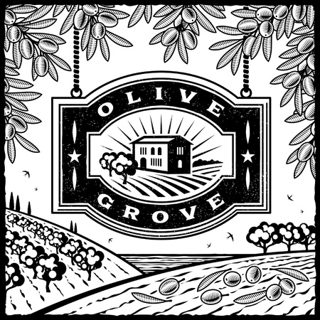 olive farm: Retro Olive Grove black and white Illustration