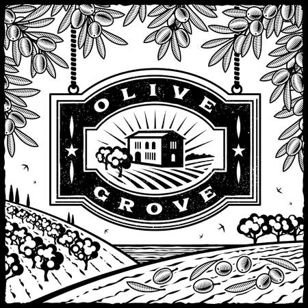 Retro Olive Grove black and white Illustration