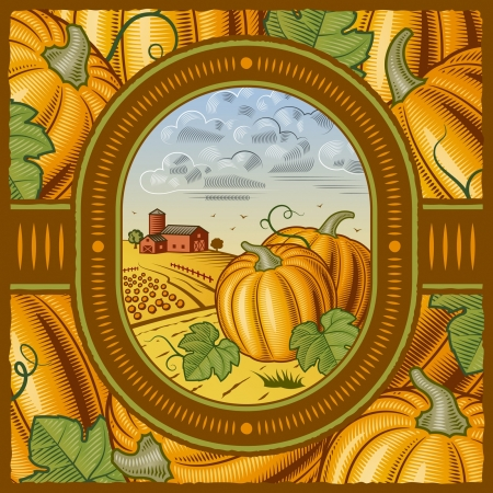 Pumpkin harvest Vector