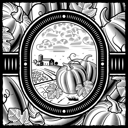 Pumpkin harvest black and white Vector